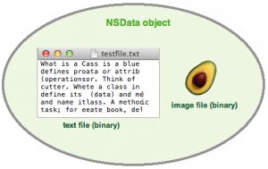 nsdata_object