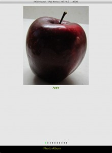 photoalbum-fig01b